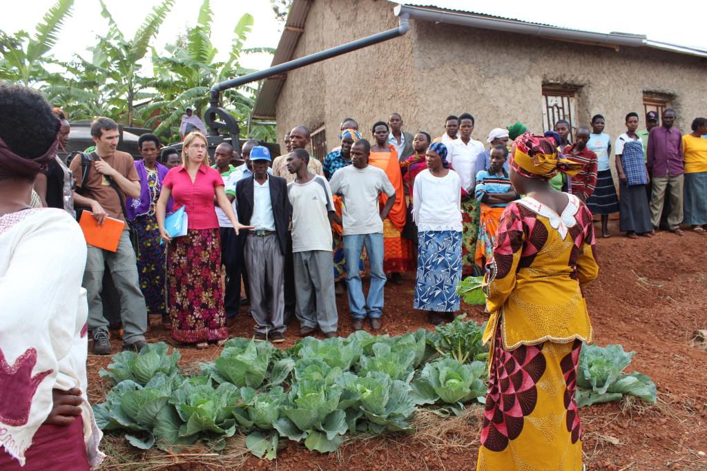 08bRwanda vegetables